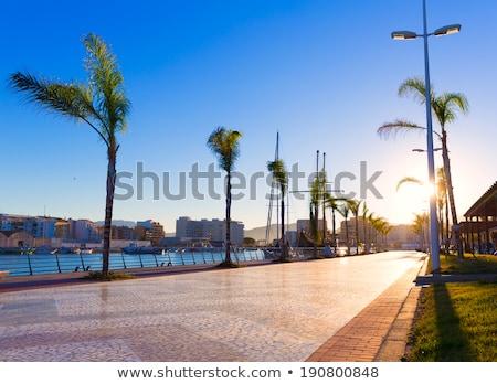 Puerto España vista Valencia árbol océano Foto stock © smartin69