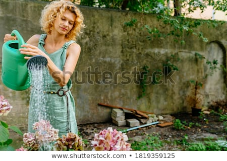 woman watering garden flowers Stock photo © IS2