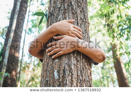 Woman hugging a tree Stock photo © IS2