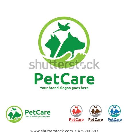 Animal care hospital concept, pet care, vector illustration. Stock photo © ikopylov