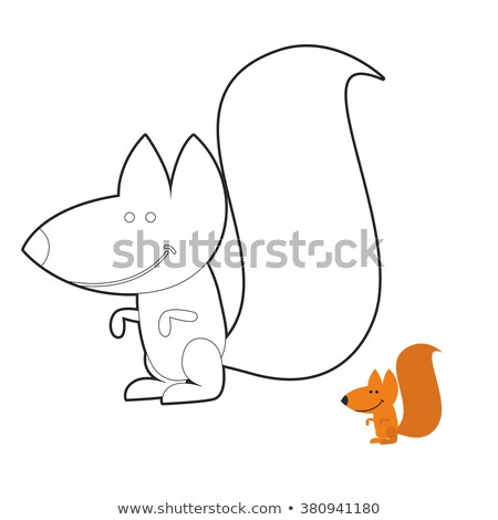 squirrel coloring book wild rodent frenzy funny cute animal ou stock photo © popaukropa