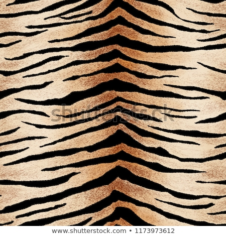 tiger skin pattern texture design stock photo © sarts