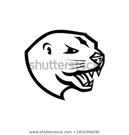 Angry Cartoon Otter Stock photo © cthoman