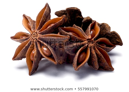 Star anise (dried Ilicium fruit), paths Stock photo © maxsol7