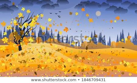 paisagem · arco-íris · árvore · água · natureza · verão - foto stock © lady-luck