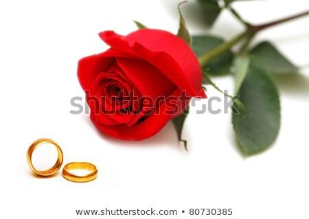 Goud ring rode rozen witte bruiloft Stockfoto © stoonn