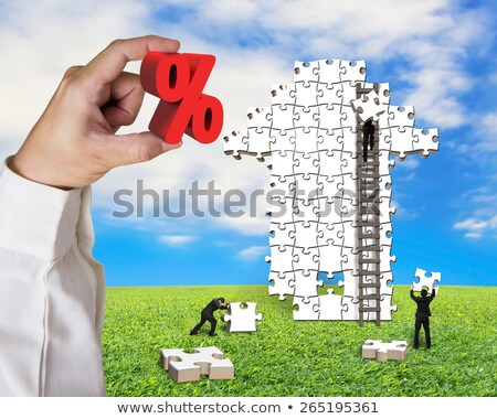 Hand Holding Jigsaw Puzzle With Percentage Symbol Stock photo © AndreyPopov
