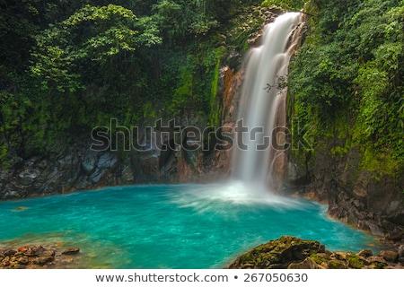 Wasserfall Costa Rica nice Dschungel Stock foto © Lopolo