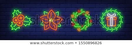 Natale · ghirlanda · frutti · di · bosco · illustrazione · colorato - foto d'archivio © robuart