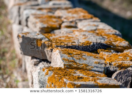 Gray house with ruined walls Stock photo © colematt