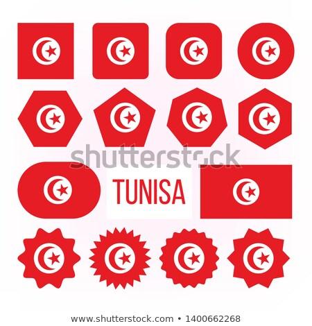 Tunísia bandeira coleção descobrir vetor Foto stock © pikepicture
