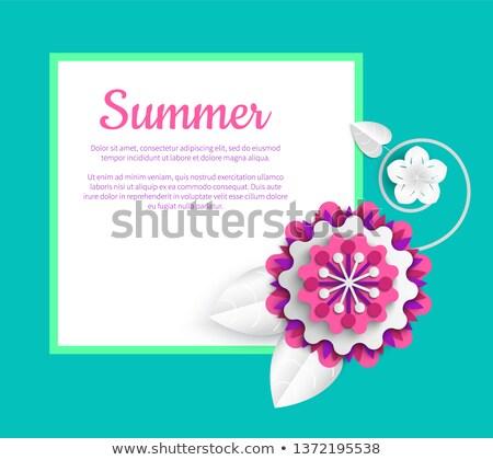 Plakat Origami Sommer Blume Vektor Vorlage Postkarte Stock foto © robuart
