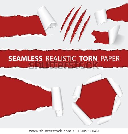 Gerçekçi yırtık kağıt kazıyın hayvan Stok fotoğraf © -TAlex-