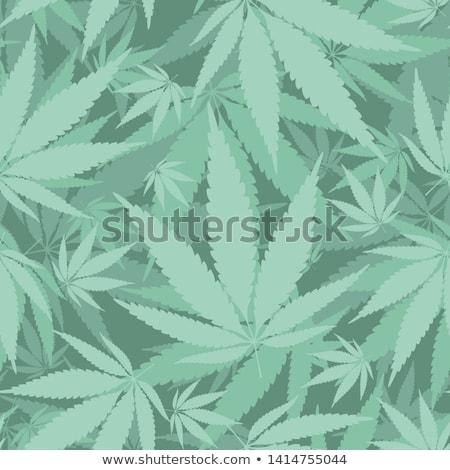 Canabis folha maconha anúncio médico Foto stock © -TAlex-