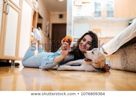 Jeune fille jouer chien ensoleillée plage Photo stock © deandrobot