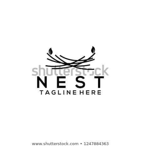 Vektör semboller kuş aile ev simgeler yalıtılmış Stok fotoğraf © freesoulproduction