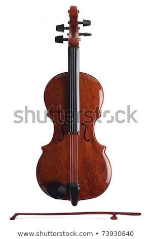 violín · ornamento · modelo · fondo · juguete · blanco - foto stock © pinkblue