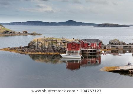 Zdjęcia stock: Atlantic Coast In Newfoundland