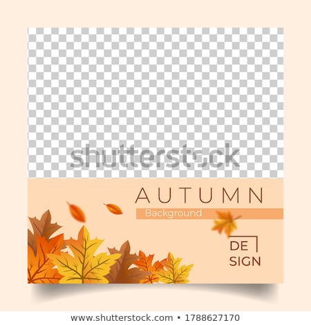 autumn theme stock photo © orson