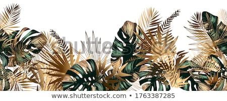 Images of a tropical paradise Stock photo © photography33