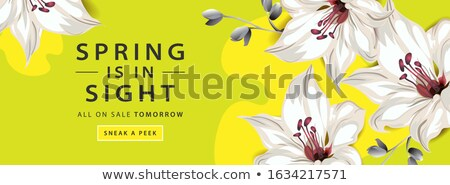 vector · vers · voorjaar · horizontaal · banners · monster - stockfoto © orson