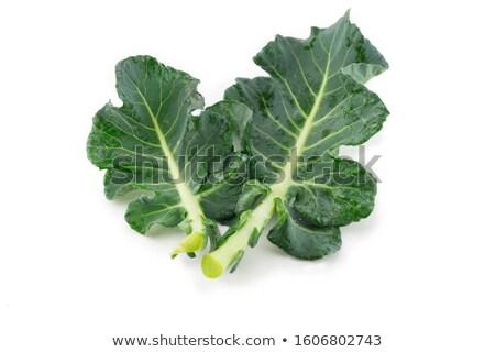 ブロッコリー 葉 白 食品 健康 工場 ストックフォト © designsstock