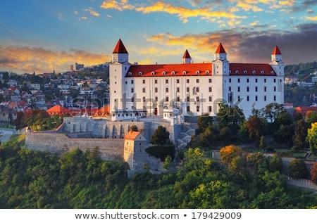 castillo · Bratislava · Eslovaquia · edificios · aire · libre · fuera - foto stock © phbcz