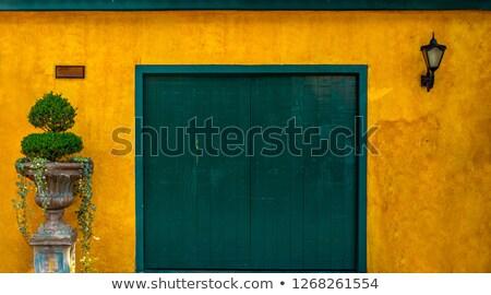 зеленый колониальный стены старые исторический центр Сток-фото © jkraft5