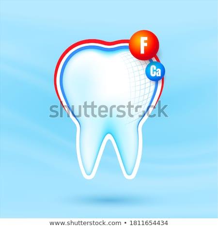 3d illustration insan diş diş macunu temizlemek Stok fotoğraf © kolobsek