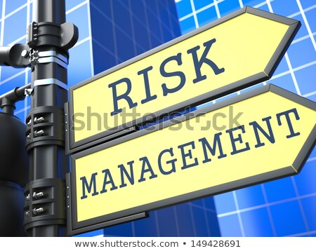 Business Concept. Risk Management Waymark. Stock photo © tashatuvango