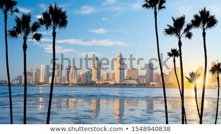 Pôr do sol praia San Diego água fundo verão Foto stock © snyfer