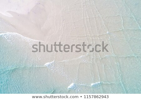 tropical lagoon with white sand and clear water stock photo © elisanth