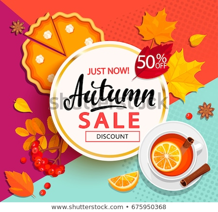 special autumn offer orange star banner Stock photo © marinini