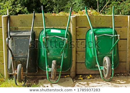 El arabası yeşil ot yaz yeşil bitki park Stok fotoğraf © mycola
