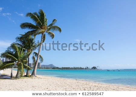 renkli · kum · dağ · plaj · telefon · ahşap - stok fotoğraf © lameeks
