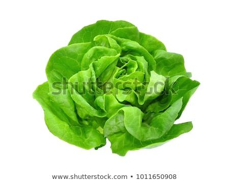 saláta · keret · friss · ropogós · zöld · piros - stock fotó © zhekos