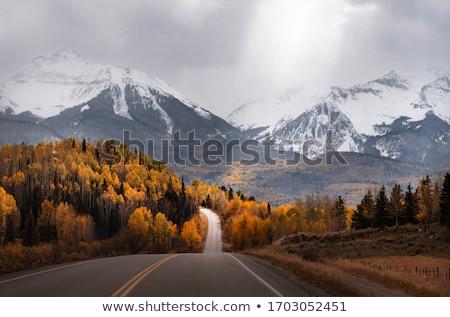 Sonbahar sahne sarı turuncu ağaçlar göstermek Stok fotoğraf © mroz