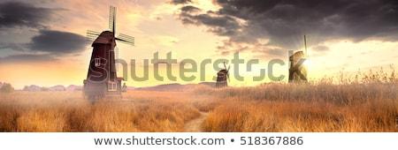 trois · coucher · du · soleil · sunrise · peuvent · utilisé · énergie - photo stock © jaffarali