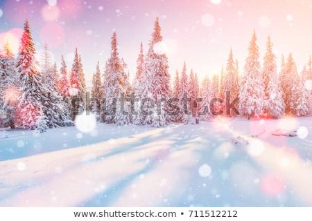 Tél tájkép hajnal hegyek hó fedett Stock fotó © Kotenko