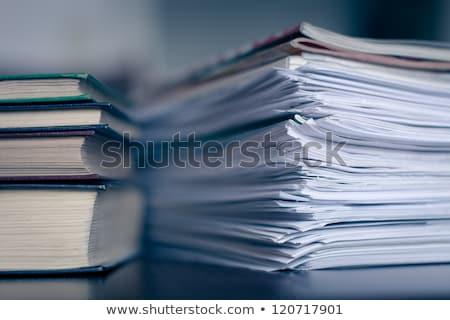 Contabili magazine libri Foto d'archivio © vlad_star