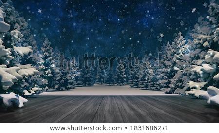 Winter forest in snow Stock photo © Kotenko
