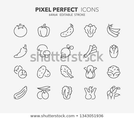 Prei lijn icon web mobiele infographics Stockfoto © RAStudio
