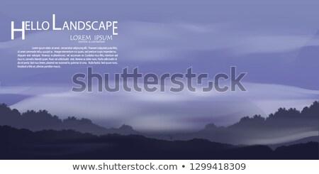 森林 午前 光 木 太陽 ストックフォト © Steffus