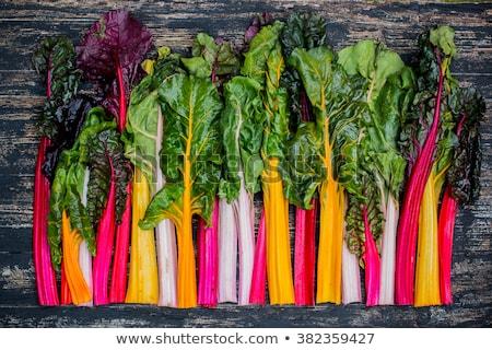 plantaardige · tuin · volwassen · voedsel · blad · groene - stockfoto © drobacphoto