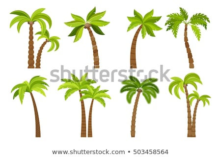 A summer artwork with coconut trees Stock photo © bluering