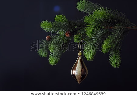 glass christmas tree with black and white balls in it isolated stock photo © avheertum