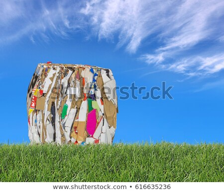Pressed boxes made of paperboard on the meadow with blue sky in  Stock photo © smuki