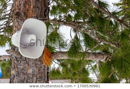 полюс · 3d · визуализации · синий · связи · воздуха - Сток-фото © albund
