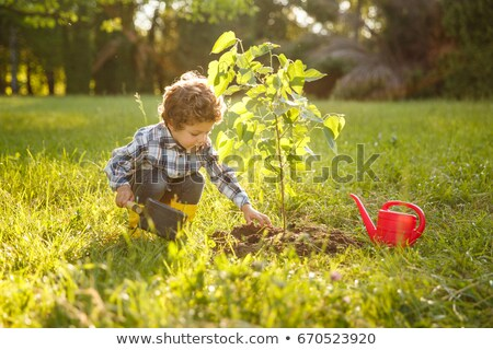 boy and plant Stock photo © grafvision