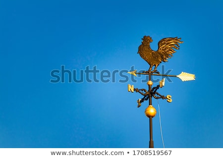 Old historic roof with weather vane Stock photo © njnightsky